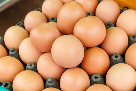 farm fresh: Egg Stock Photo