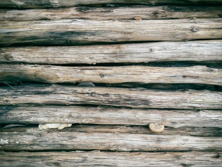 log wall: Seamlessly tiling wooden log wall background. Stock Photo