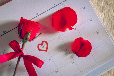 number 14: red rose with bow put on calendar marking at number 14, Valentine day concept. Stock Photo