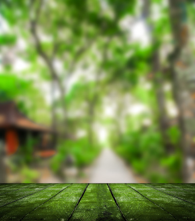 wooden insert: nature blurred background with wooden plank under for insert products