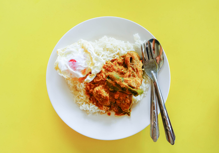 bagre: Close up curry on rice with egg in the dish, Thailand food style. Foto de archivo