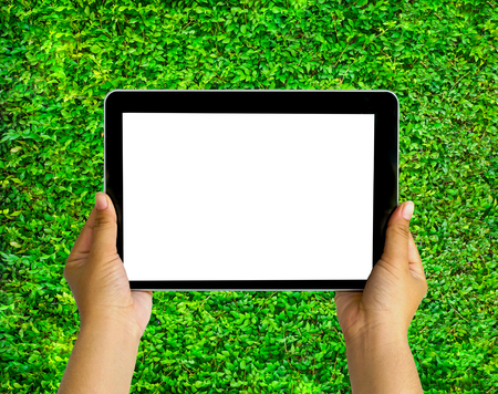 blank space: Human hand showing tablet with blank space for texts or products display on grass background at the park Stock Photo