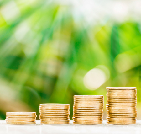contaduria: Gold coins collect on table with fresh nature background, saving concept.