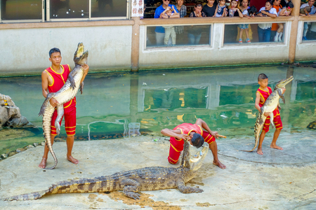 SAMUTPRAKARN, THAILAND - FEBRUARY 26 2017 :Unidentified Man show Holding Crocodile At Samutprakan Croc Farm and Zoo.