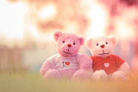 teddy bear with sunset silhouette.Valentines Day