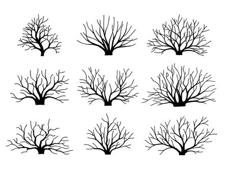 Vector Image bushes without leaves. Set. Autumn winter. Bushes. Fallen down leaves