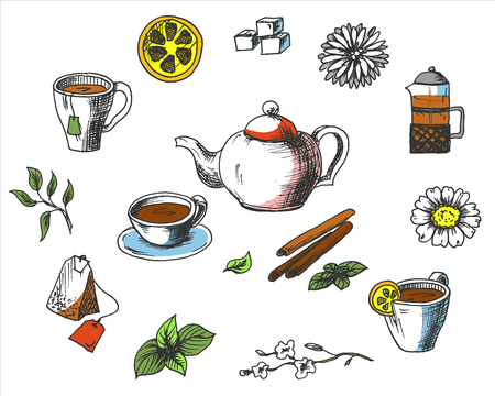 Tea collection elements in graphic style, hand-drawn vector illustration