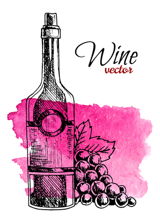 Bottiglia di vino e uva disegnata a mano su priorità bassa della spruzzata dell'acquerello. Illustrazione vettoriale di stile retrò. Vettoriali