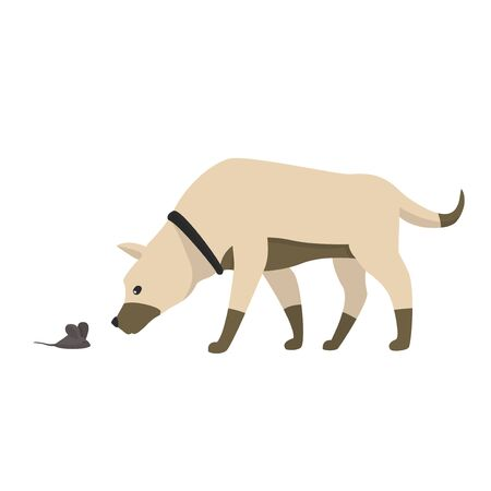 Funny cartoon little dog sniffs the mouse, vector illustration, isolated on white.