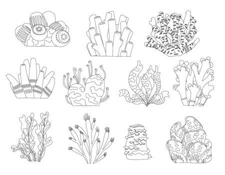 Conjunto de dibujos animados de plantas y criaturas submarinas para colorear página de libro. Vector aislado corales y algas.