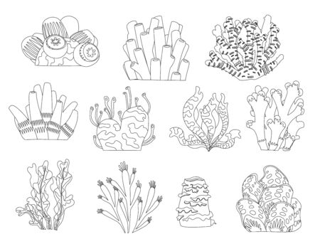 Set of cartoon underwater plants and creatures coloring book page. Vector isolated corals and algae.