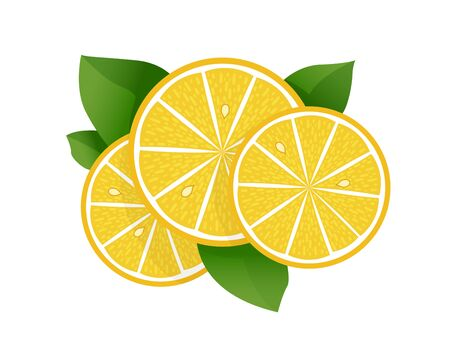 Lemon slice vector illustration on white background. Fresh sour lemon icon. Logo design