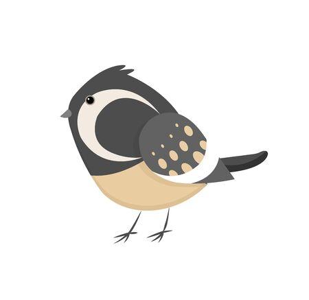 Pequeño pájaro colorido lindo aislado en el fondo blanco. Gorrión común. Pequeño pájaro en estilo de dibujos animados lindo. Ilustración de arte de clip de vector aislado. Ilustración de vector de pájaro magnífico hada reyezuelo.