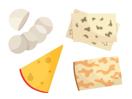 Various types of cheese. Modern flat style realistic vector illustration icons, isolated on white background  イラスト・ベクター素材