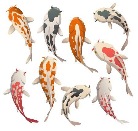 Metti il pesce che galleggia con calma. Koi fish illustrazione vettoriale carpa giapponese e colorate koi orientali in Asia. Set di pesci rossi cinesi, pesca tradizionale isolata su sfondo Vettoriali