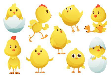 Insieme del pollo sveglio del fumetto. Polli gialli divertenti in diverse pose, illustrazione vettoriale. Collezione di simpatici pulcini gialli. Illustrazione vettoriale di piccoli polli per bambini. Vettoriali