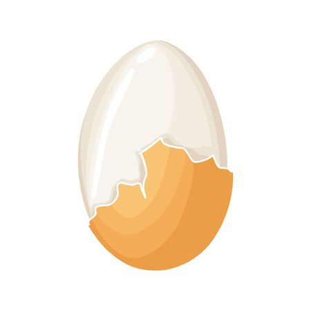 Boiled egg. Cracked eggshell and proteins isolated on white background. Egg vector healthy food