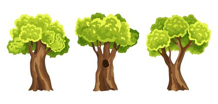 Trees with green leafage. Set of abstract stylized trees. Natural illustration Vettoriali