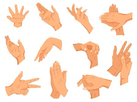 Set of human hands gestures. Different human finger gesture signs collection. Isolated vector illustration.