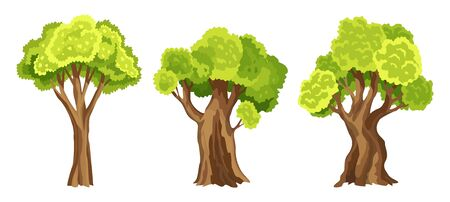 Trees with green leafage. Set of abstract stylized trees. Watercolor foliage. Natural illustration