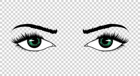 Vector eyes. Hand drawn female luxury eye with perfectly shaped eyebrows and full eyelashes. The perfect look. Health glamour design.