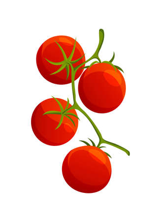 Chery tomato. Fresh healthy red tomato made in flat style. Vegetarian food. Vegetable from the farm. Organic food. Vector illustration of tomato.