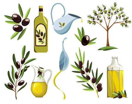 Organic olive products set. Oil elements. Fresh ripe tree fetuses and fragrant oil in bottles and jugs isolated on white background Ilustração