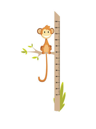 Wall meter with little monkey. Sticker for measuring height kids. Funny vector cartoon illustration for children