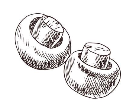Vegetables top view frame. Engraved design. Mushrooms prepared to bbq design template. Vintage hand drawn sketch vector illustration. Good nutrition Stock Illustratie