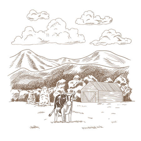 Cows grazing on meadow. Hand drawn farm land with barn vector illustration. Rural landscape, village vintage sketch Ilustração