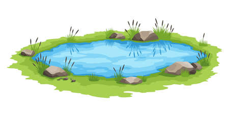 Picturesque natural pond. Concept of open small swamp lake. Water pond with reeds. Natural countryside landscape. Multicolour game scene