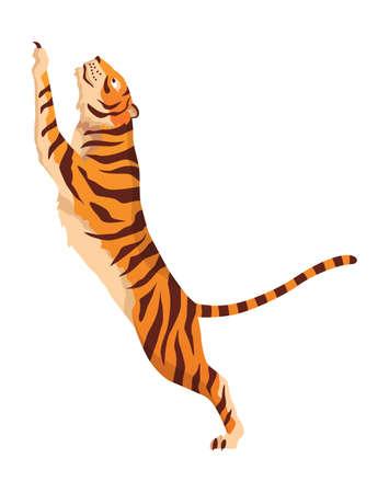 Adult big tiger. Cute animal from wildlife. Big cat. Predatory mammal. Painted cartoon animal design. Flat vector illustration isolated on white background