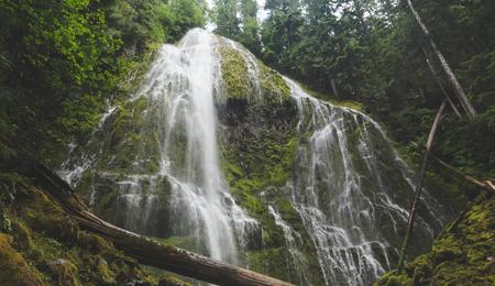 Beautiful waterfall in lush forest setting. Proxy Falls in western Oregon, USA.