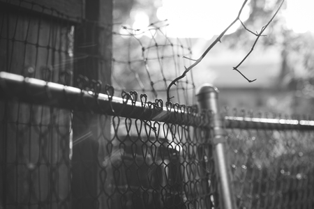 leaning by barrier: A battered chain link fence and chicken wire in black and white. Stock Photo
