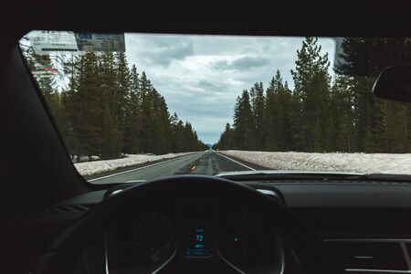 winter escape: Drivers perspective from steering wheel on a snowy winter highway with tall forest trees.