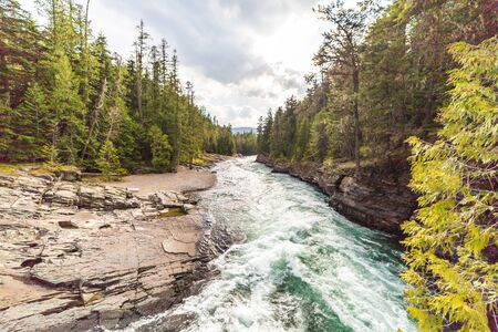 Swift whitewater currents in dense forest inside Glacier National Park, Montana, USA.