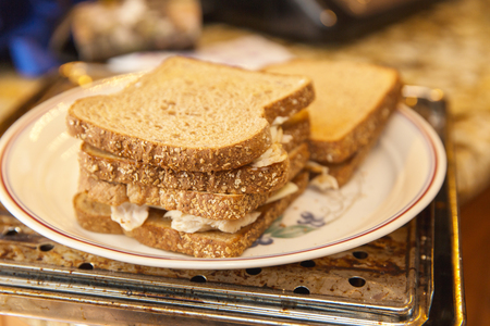 Stacks of sandwiches with whole wheat bread, white cheese, and chicken on a ceramic plate. Banco de Imagens