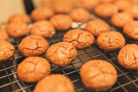 Close up view of chocolate cookies on cooling rack. Banco de Imagens