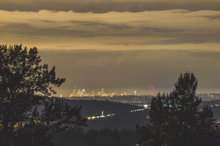 City lights of Seattle, Washington shine between trees at night. Planes and jets can be seen flying above the city.