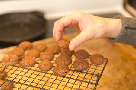 Baked chocolate cookies cooling on a rack. Womans hand picking up one cookie. Banco de Imagens