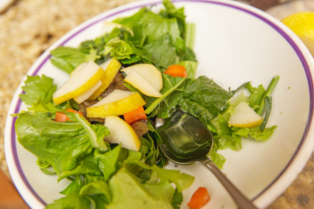 Salad bowl with romaine lettuce, apple slices, carrot slices, and other ingredients.