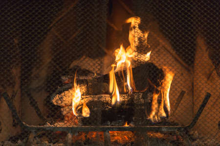 Logs burn inside a fireplace. Metal protective screen in view.