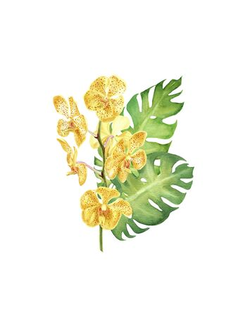 hand drawn watercolor tropical plants. bouquet with monstera leaf, orchid and hibiscus flowers isolated on white background. element for design, invitation, greeting card