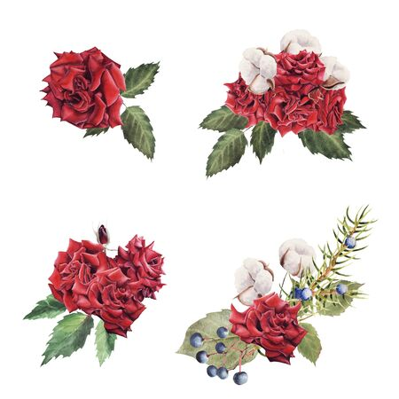 Hand Drawn  bouquet set with Red Rose and cotton plant isolated on white background. Design element for poster, greeting card, wedding invitation, birthday, Valentines Day, mothers day