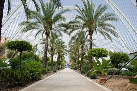 valencia: Garden at the City of Arts and Science in Valencia, Spain