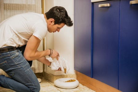 feed: Responsible Attractive Young Man Filling Pet Bowl with Dry Food for Cat or Dog in Kitchen