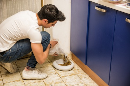 animal feed: Responsible Attractive Young Man Filling Pet Bowl with Dry Food for Cat or Dog in Kitchen