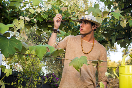 earnest: Side view of handsome young man in hat toching vine leaves in garden in sunlight