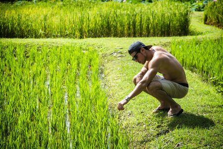 and the horizontal man: Young muscular man sitting in the field and looking at plants. Horizontal outdoors shot. Stock Photo