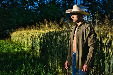 Portrait of farmer or cowboy in hat with unbuttoned shirt on muscular torso, looking to a side, while standing next to hay field in countryside